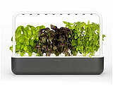 600089 - Click & Grow SMART GARDEN 9 grau
